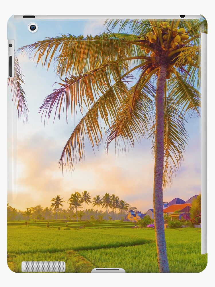 Bali rice fields by mattclarkphoto