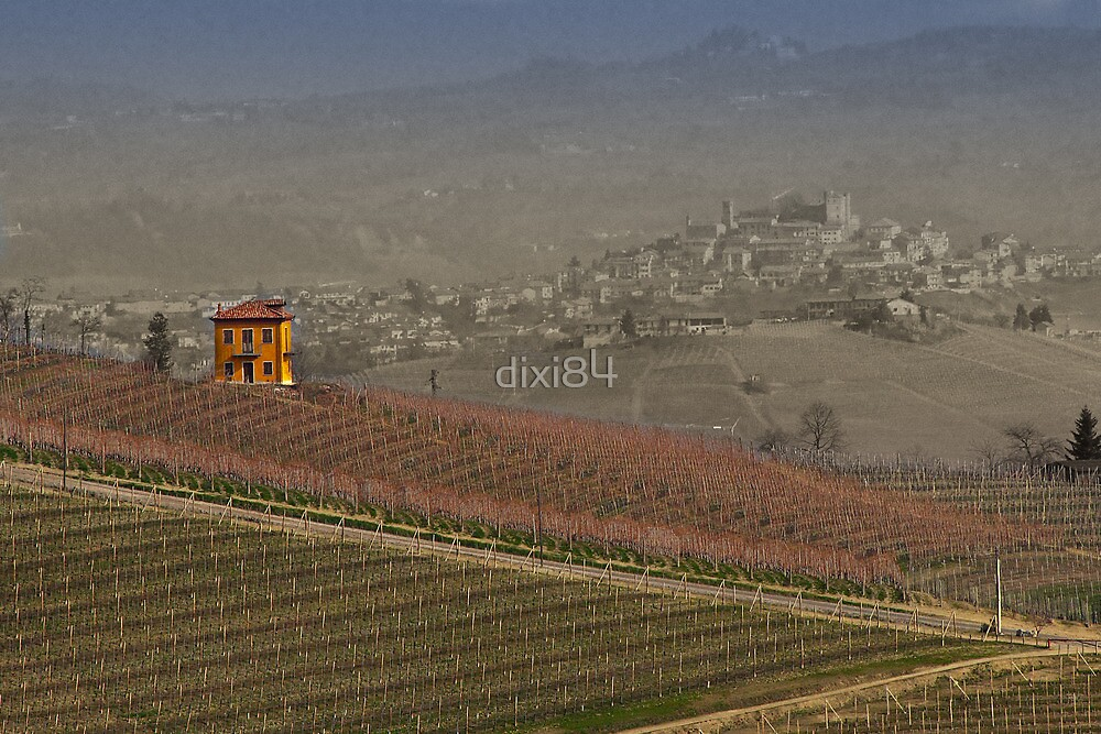 vineyard in Italy by dixi84