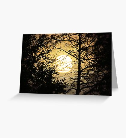 Moon Silhouette ~ Greeting Card