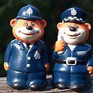 The Teddy Police by Bev Pascoe