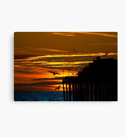 Birds at Sunset Canvas Print