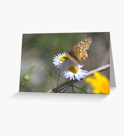 Spring in Texas Greeting Card