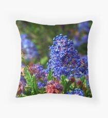 Searching Bee Throw Pillow