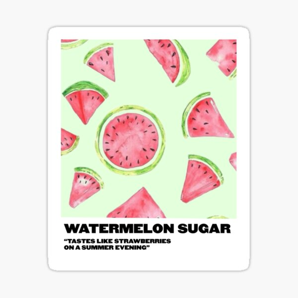 watermelon sugar polaroid Sticker