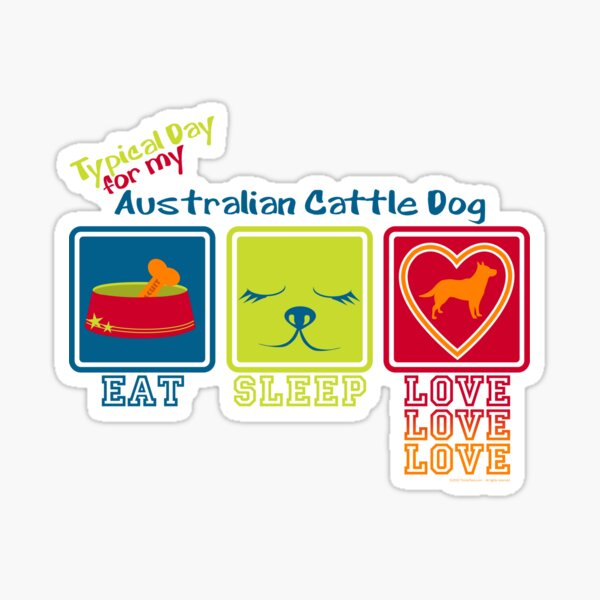 Typical Day For My Australian Cattle Dog Sticker