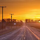 Back Country Road Sunrise  by Bo Insogna