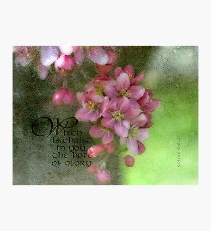 hope of glory-Col. 1:27 Photographic Print