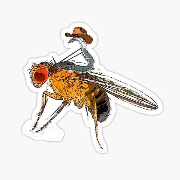 C. Elegans Riding Drosophila Fly Model Organism Rodeo Sticker