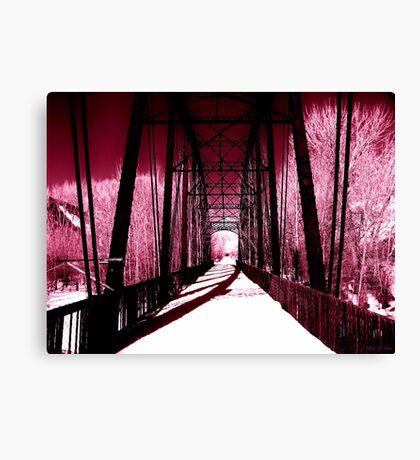 Pink Winter Walk Canvas Print