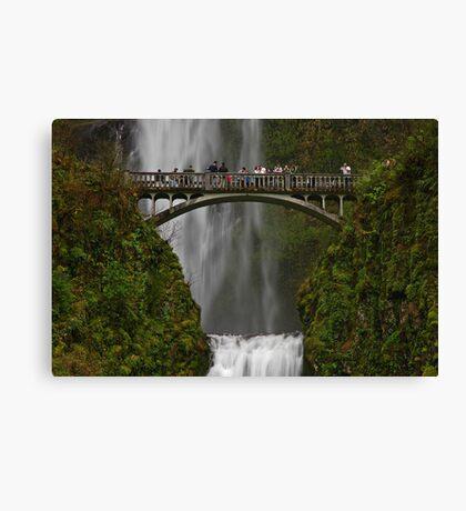 An Oregon Favorite Canvas Print