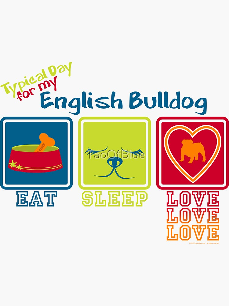 Typical Day For My English Bulldog by TaoOfBlue
