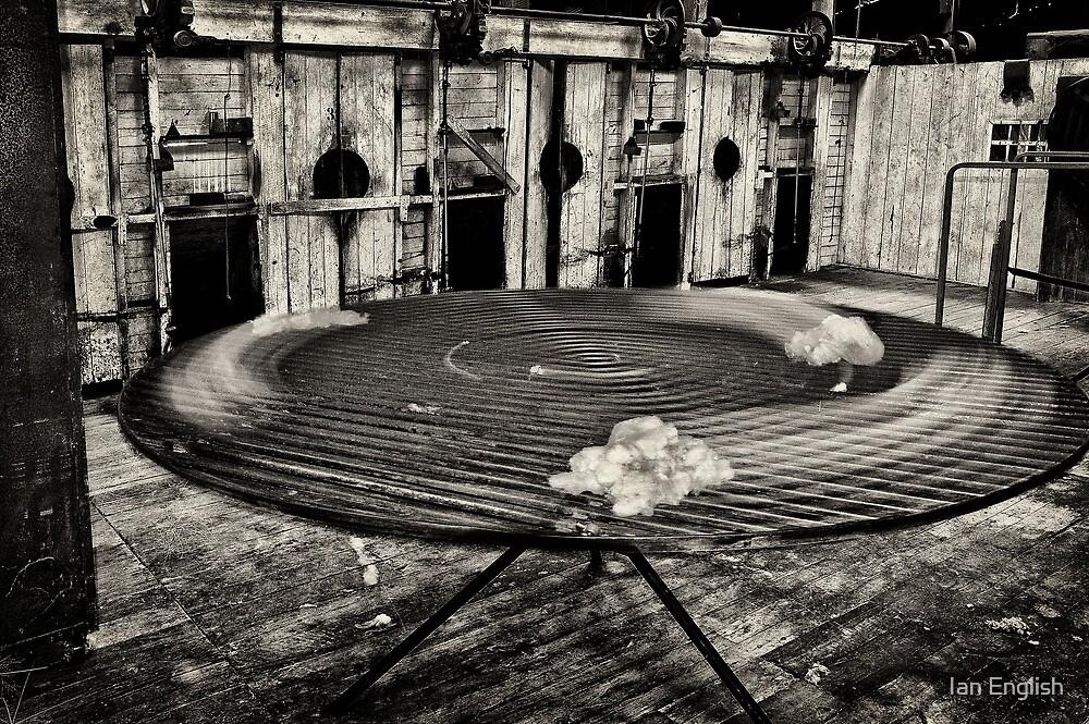 Spinning Wool by Ian English