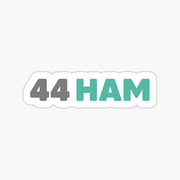 Lewis Hamilton n ° 44 Team Mercedes Sticker