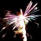 Fireworks by SylanPhotos