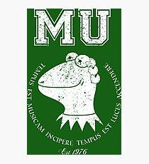 Muppet University Photographic Print