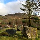 Dromagorteen Stone Circle 1  by CliveOnBeara