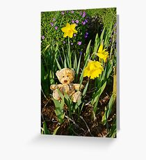 Basking In The Daffodils Greeting Card