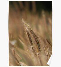 I love Grass. Poster