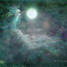 A magical world - full moon 8/3/12 by © Pauline Wherrell