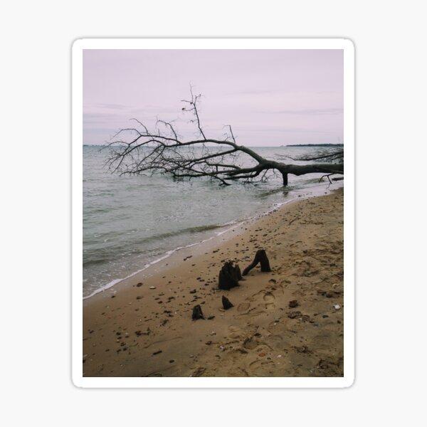 Stormy beach Sticker