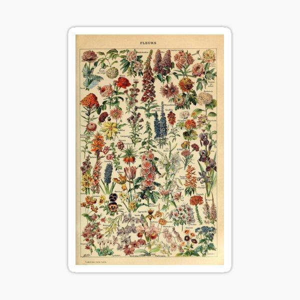 vintage flowers poster Sticker
