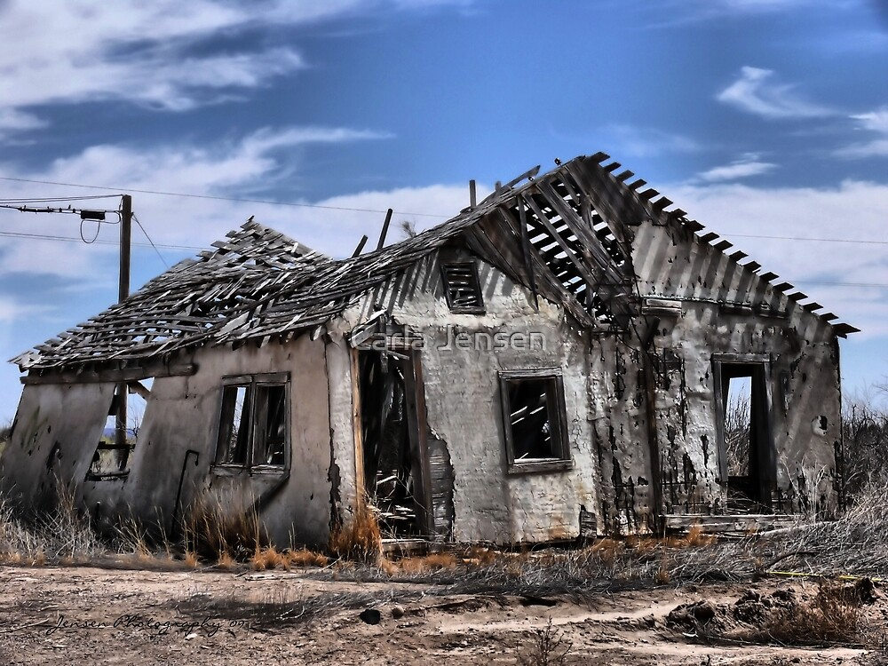 House For Sale by Carla Jensen