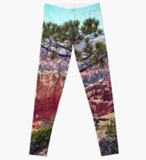 Canyon View Leggings