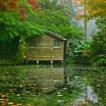 Reflections of Autumn by SamSneddon
