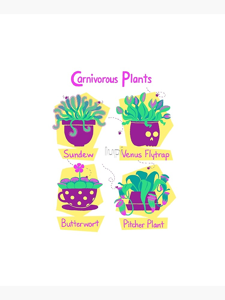 Carnivorous Plants by lupi