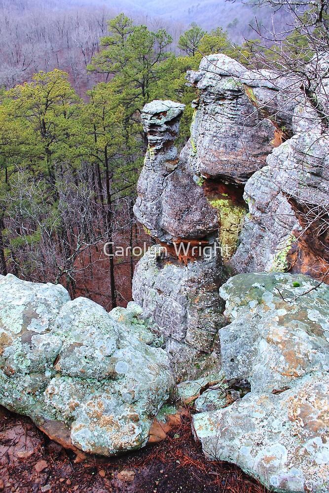 Pedestal Rocks Scenic Area, Pelsor, AR - Arkansas, Ozarks Region by Carolyn Wright