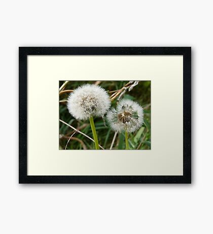 And Then the Wind Blew Framed Print