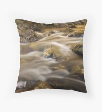 Flow of the Shadow Throw Pillow
