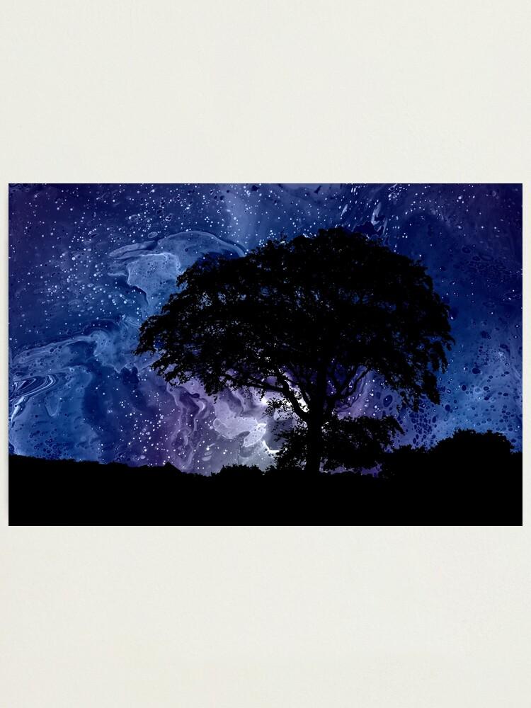 Alternate view of Nightfall: Twilight scenery, trees, sky, stars Photographic Print