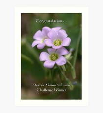 Challenge Winner Banner for Mother Nature's Finest! Art Print