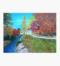 small road to town Photographic Print