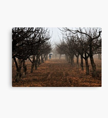 Out Walking in the Orchard Canvas Print