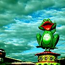 Frog over the sky by emenica