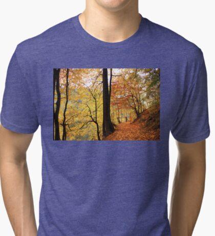 Autumn 4 Tri-blend T-Shirt