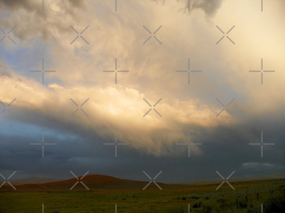 Evening's Summer Storm by Betty  Town Duncan