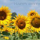 Happy Birthday by Karen Havenaar