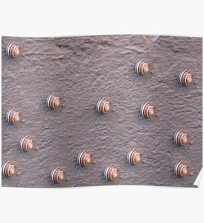 Wall of Snails Poster
