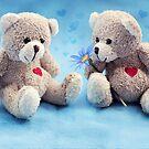 Teddy Love by micklyn