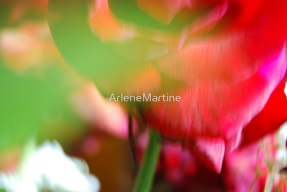 A Secret Heart, A Dozen Roses, February 2012 by ArleneMartine