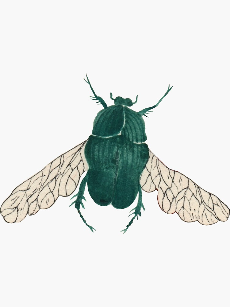 Green good luck beetle  by spoto