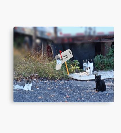 Mouse Patrol Canvas Print