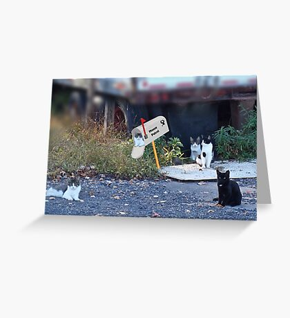 Mouse Patrol Greeting Card