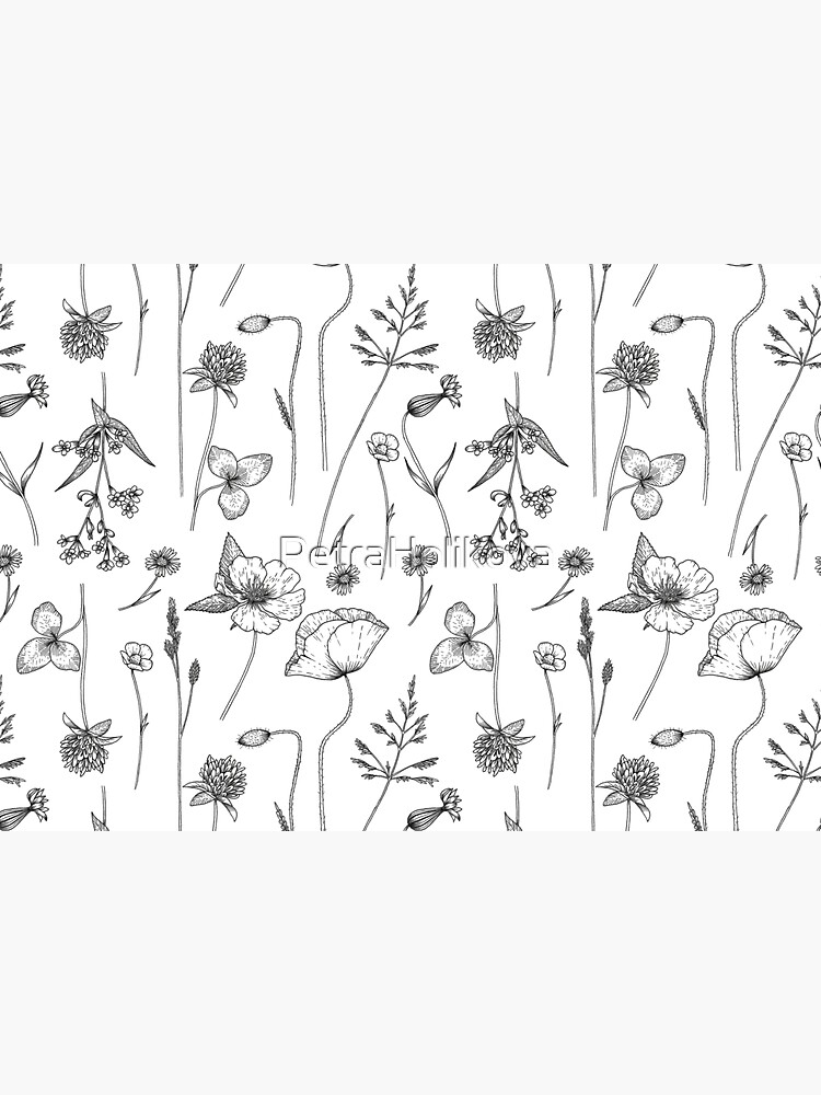 Wild Flowers by PetraHolikova