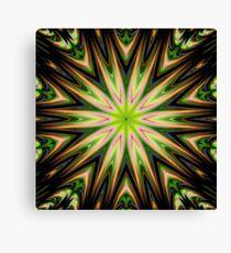 Color 11 Kaleidoscope Canvas Print