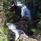 Waterfall on Wombeyan Creek by Richard  Windeyer
