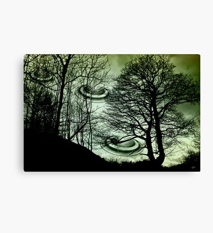 High On The Hill  Canvas Print